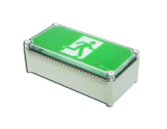 Emergency 3W LED MAINTAINED IP65 unit only